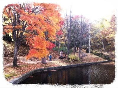 札幌芸術の森の野外美術館、ピクニックや探検気分で森を巡ろう!